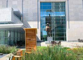 Beehives positioned in garden with Sir Walter Raleigh statue in background